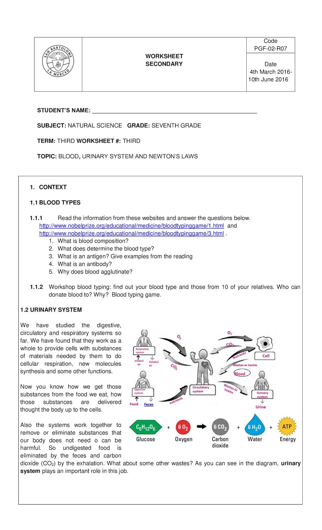 Urinary System Worksheet High School Worksheet For