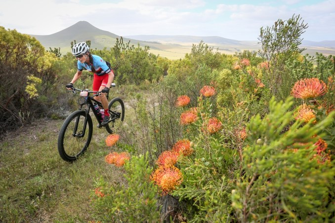 Race director Anneke Viljoen in action during the Stanford MTB Classic trial ride. Photo by Oakpics.com.