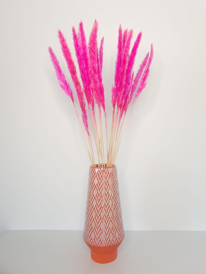 """""""Dried Fluffy Pampas (pink)"""""""