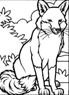 Animals Coloring Pages Online Printable B6QSA