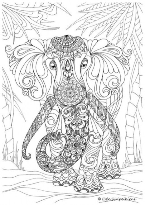 Challenging Coloring Pages of Elephant for Adults 8895f5