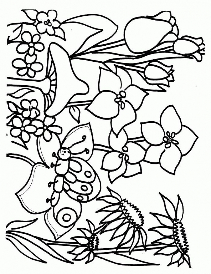 Spring Coloring Pages Spring Time Coloring Pages Download Free ...   960x741