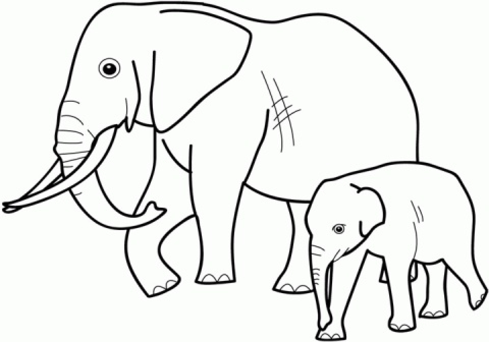 20 Free Printable Elephant Coloring Pages For Preschoolers Everfreecoloring Com