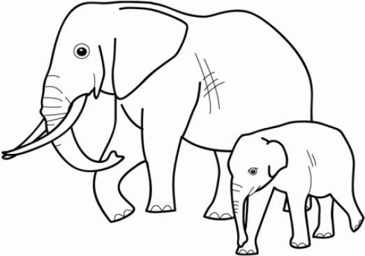 Elephant Coloring Pages for Preschoolers 974256