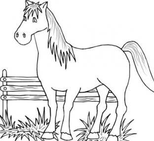Free Printable Farm Animal Coloring Pages for Kids 5gzkd
