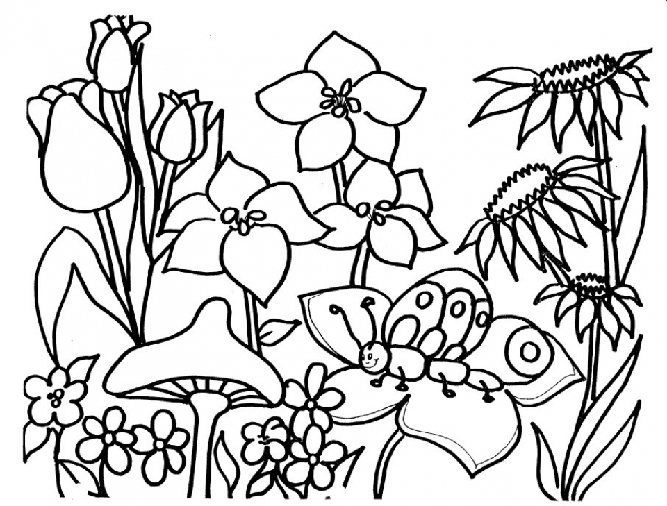 Free Printable Spring Coloring Pages for Kids   5gzkd