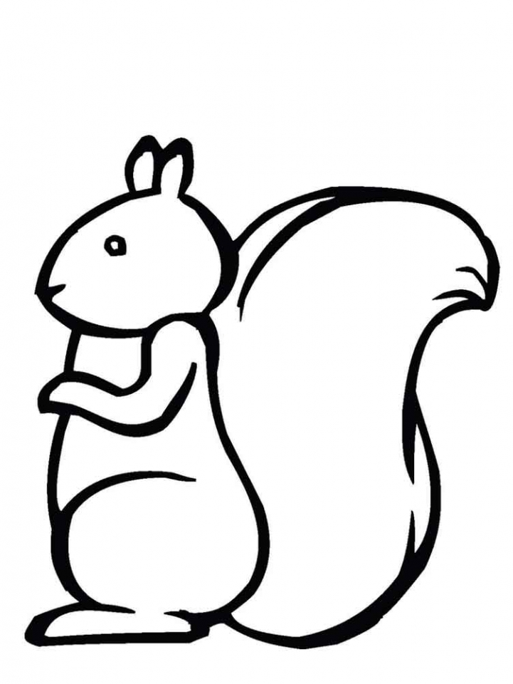 Image of Squirrel Coloring Pages to Print for Kids   uan64