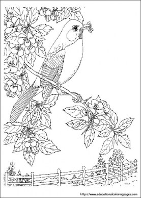 Nature Coloring Pages to Print for Kids aiwkr