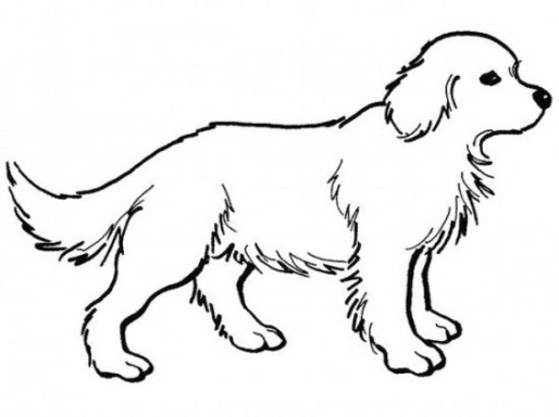 Online Coloring Pages Of Dogs 17433