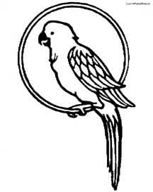 Parrot Coloring Pages Free Printable 9466