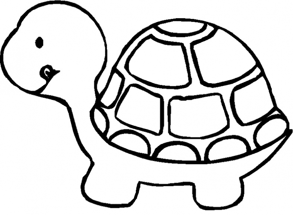 Turtle Coloring Pages to Print for Kids   aiwkr