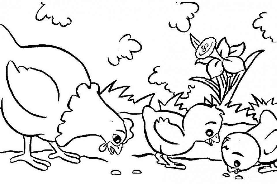 Online Farm Coloring Pages   AS1YC