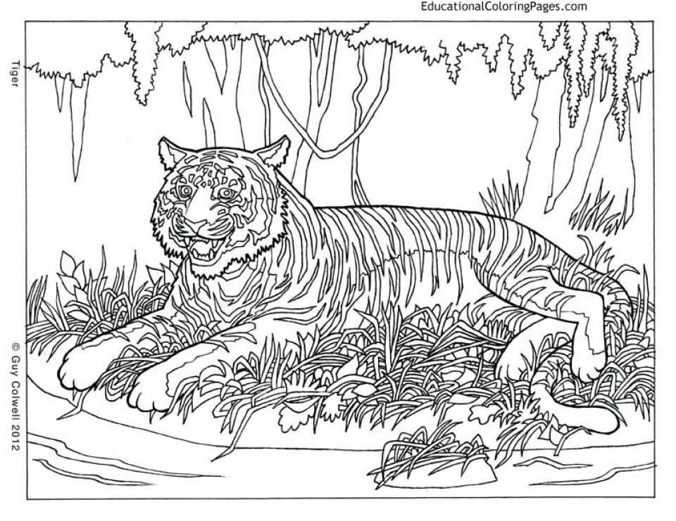 Printable Difficult Animals Coloring Pages for Adults   6756DR3