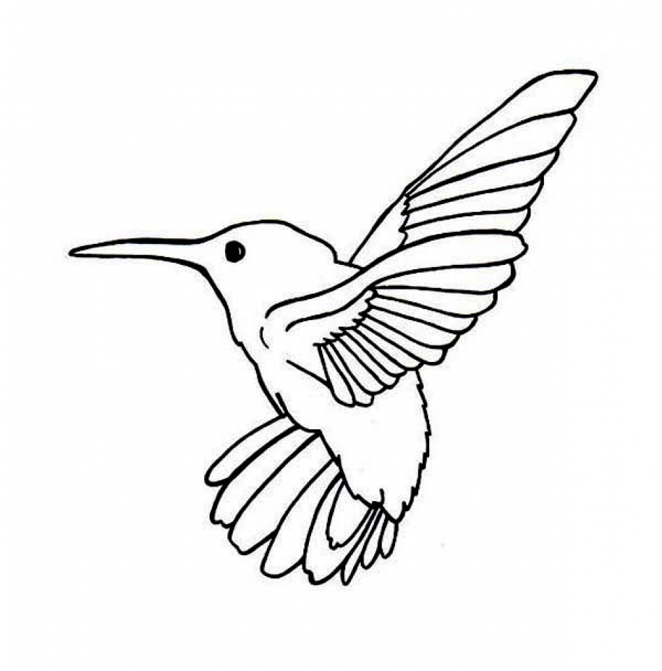 Printable Hummingbird Coloring Pages Online   89391