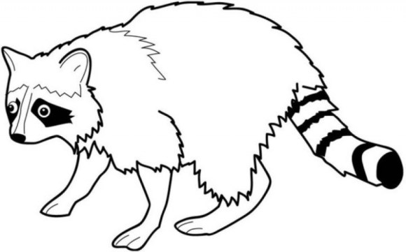 Printable Raccoon Coloring Pages Online 59808