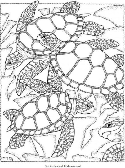 Summer Coloring Pages to Print Out for Adults - 83201