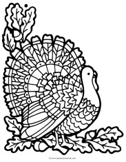 Turkey Coloring Pages for Adults - 66310