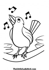 Bird Coloring Pages Free Online 72718