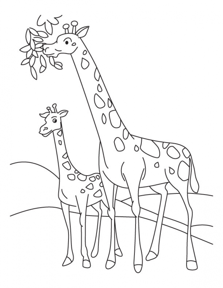 Giraffe Coloring Pages Printable   09412