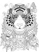Tiger Coloring Pages Intricate Zentangle Art for Adults 75901