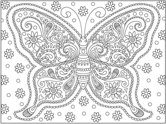 Advanced coloring pages of Butterfly for Adults - 74617