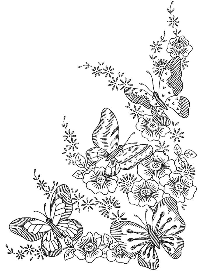 Difficult Butterfly Coloring Pages for Adults - fgt67