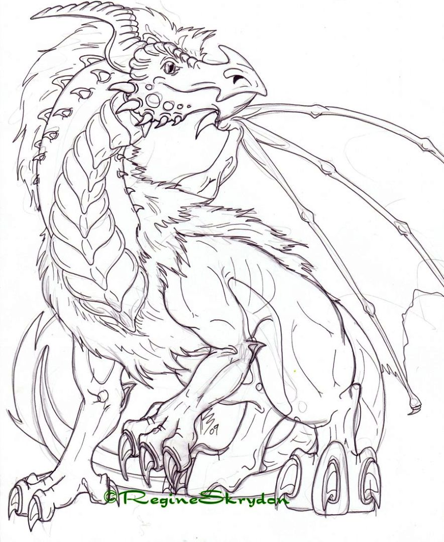 Dragon Coloring Pages for Adults Printable - u3c61