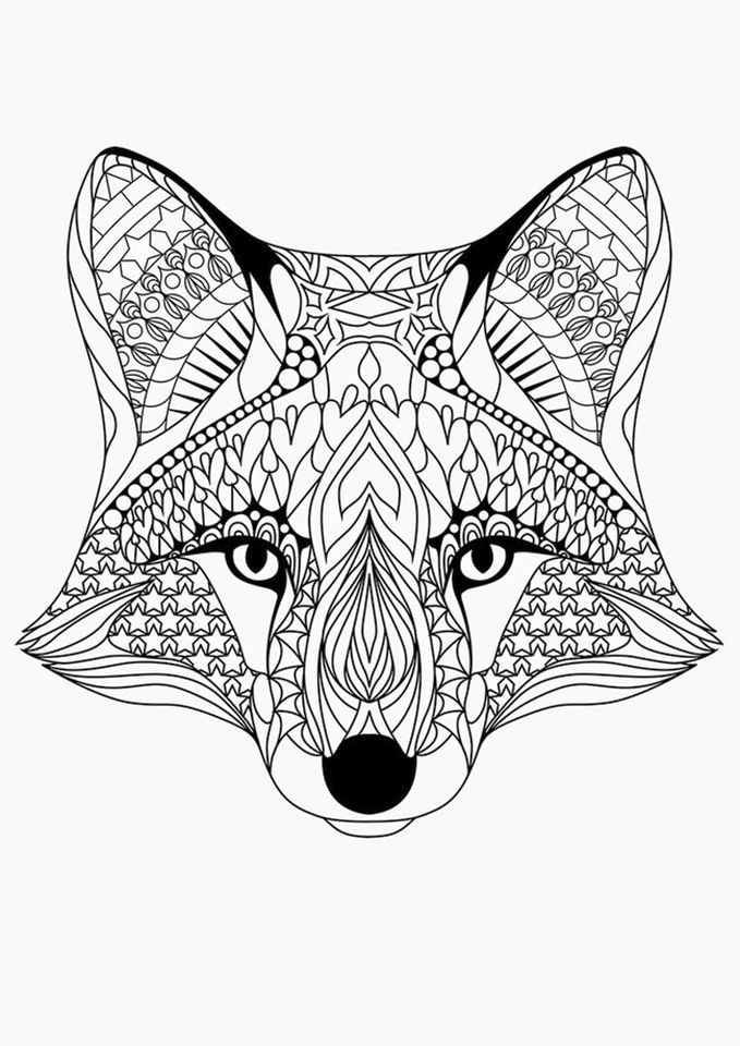 Fox Coloring Pages for Adults Printable - 91abn