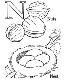 Letter N Coloring Pages Nuts - n381n