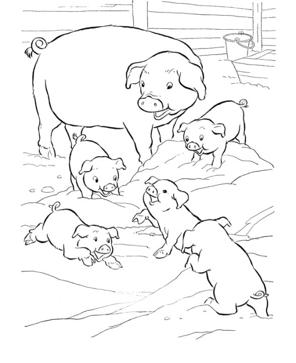 Get This Pig Coloring Pages to Print Out - 99310