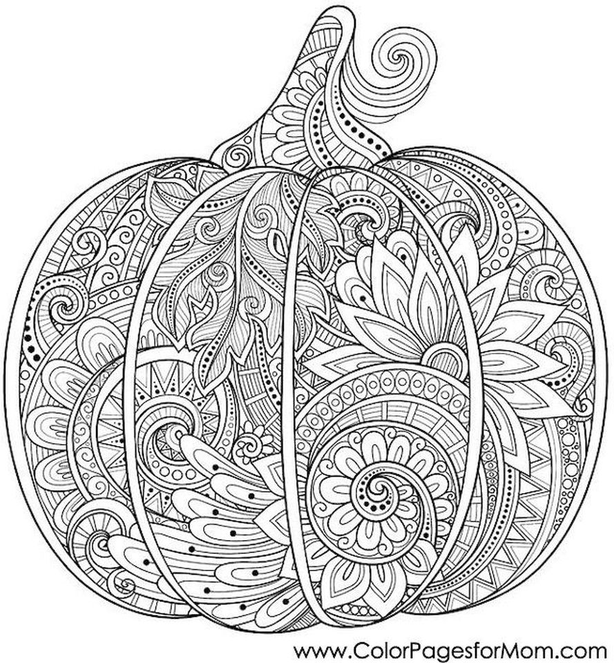 Pumpkin Coloring Pages for Adults Printable - 52184