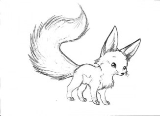 baby fox coloring pages 7ah3m