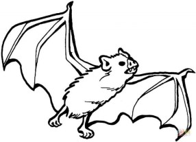 Bat Coloring Pages Printable 73189
