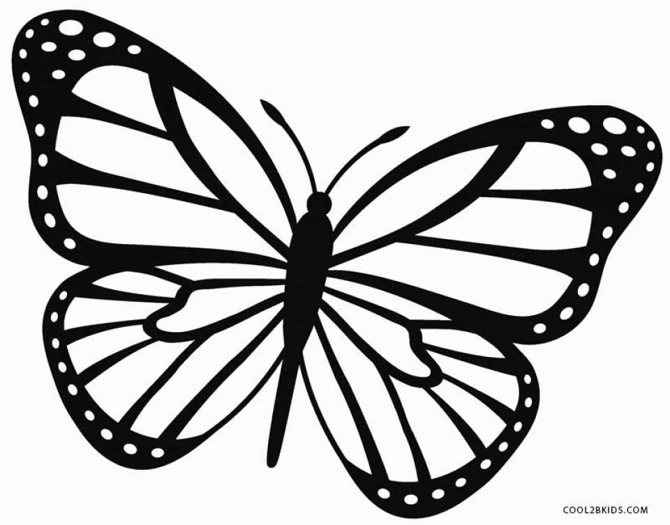 Butterfly Coloring Pages Free   5df31