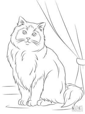 cat coloring pages dter4