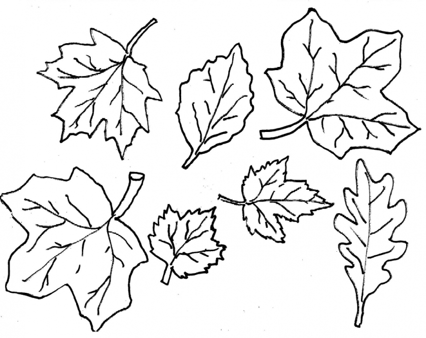 20+ Free Printable Fall Leaves Coloring Pages ...