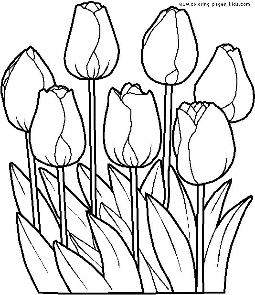 Flowers Coloring Pages for Kids   3188