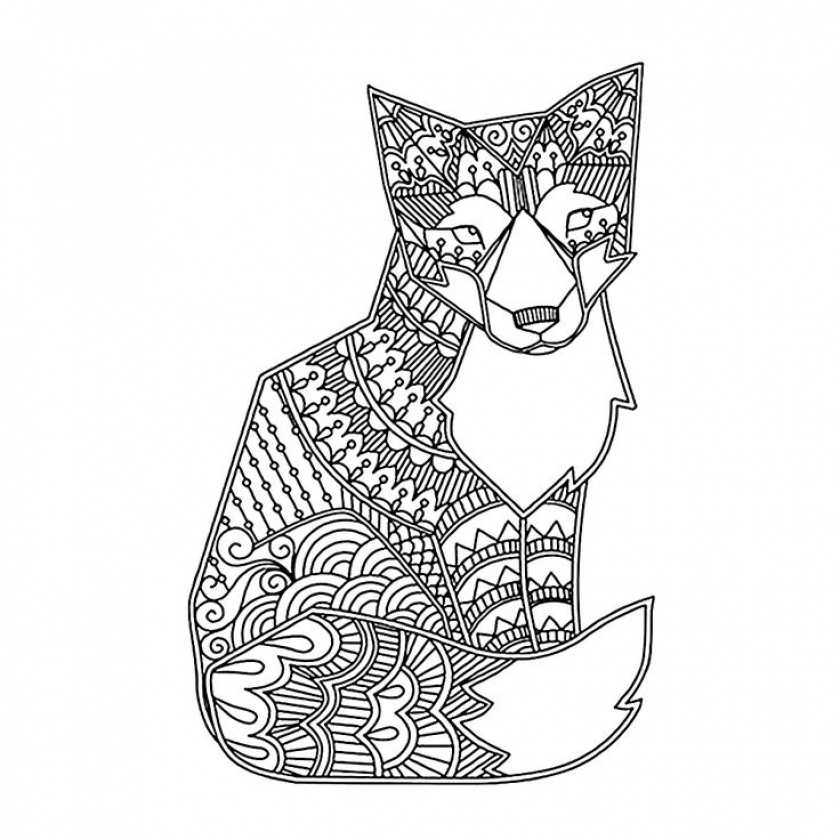 Fox Coloring Pages for Adults   2mk67