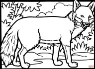 Fox Coloring Pages Free 8cn4m