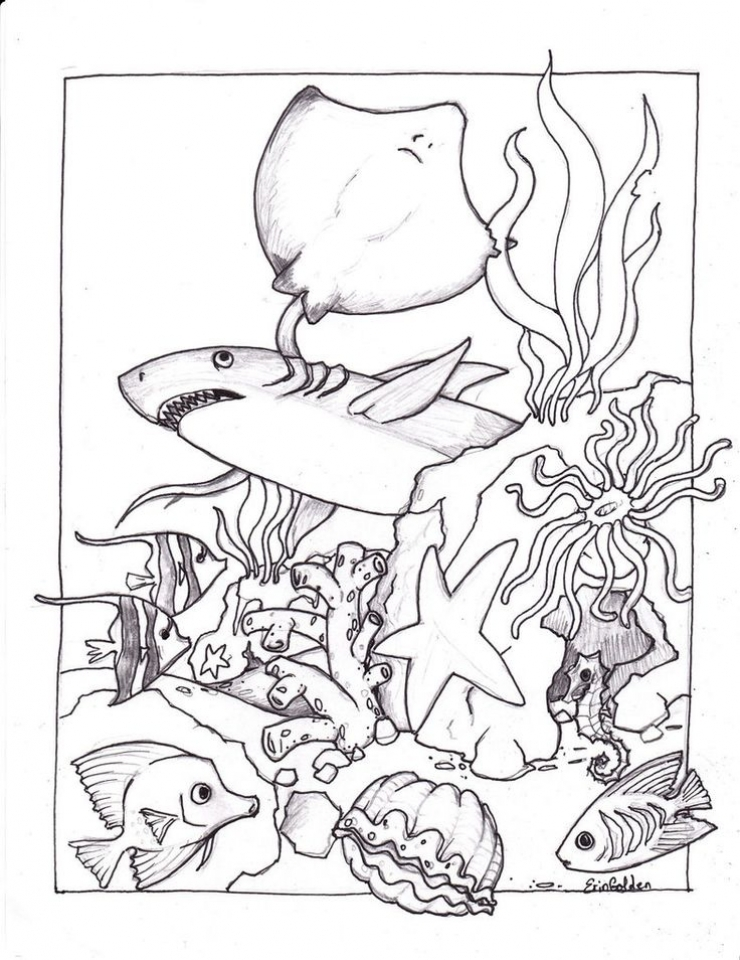 get this ocean animals coloring pages urb48