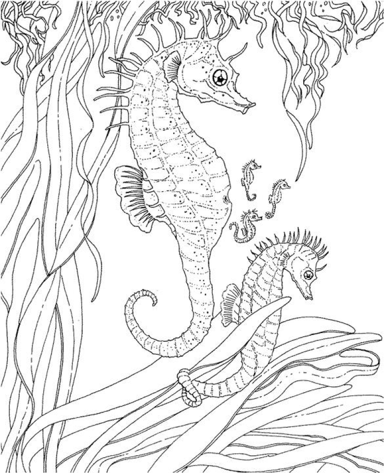 Get This Ocean Coloring Pages Free 2756g