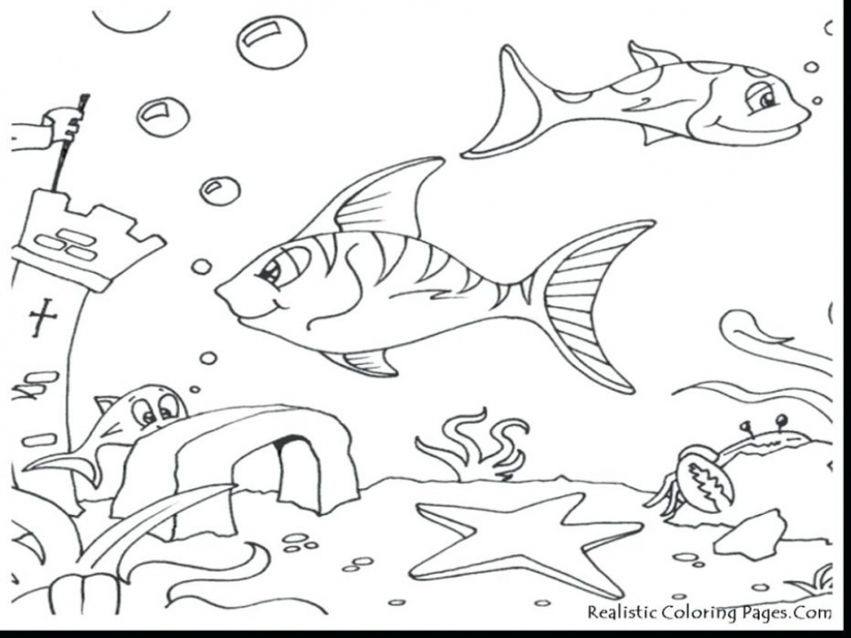 Ocean Coloring Pages Printable   27dh4