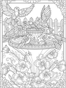 Adult Coloring Pages Animals Bird 3