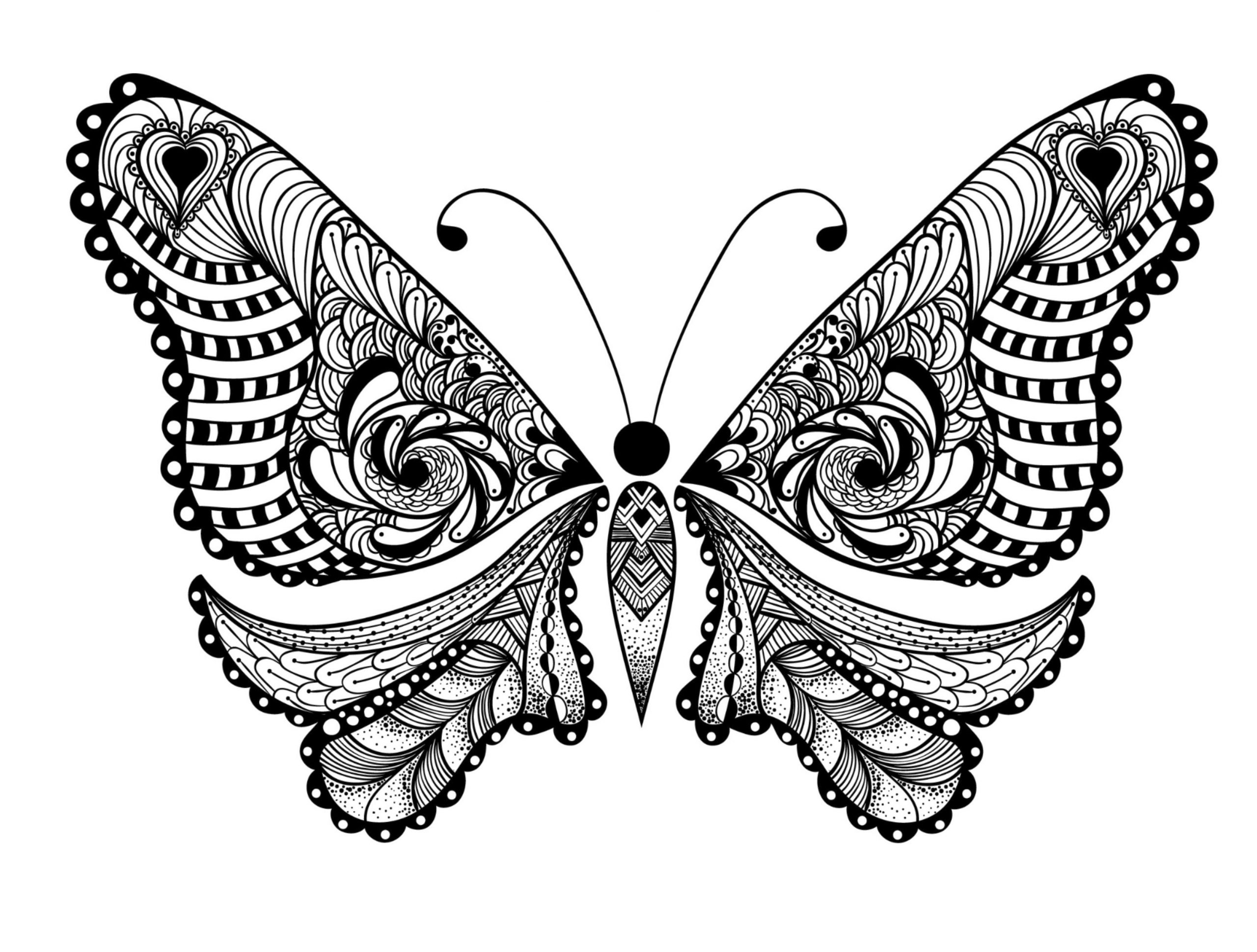 Get This Adult Coloring Pages Animals Butterfly 1