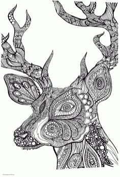 Adult Coloring Pages Animals Deer