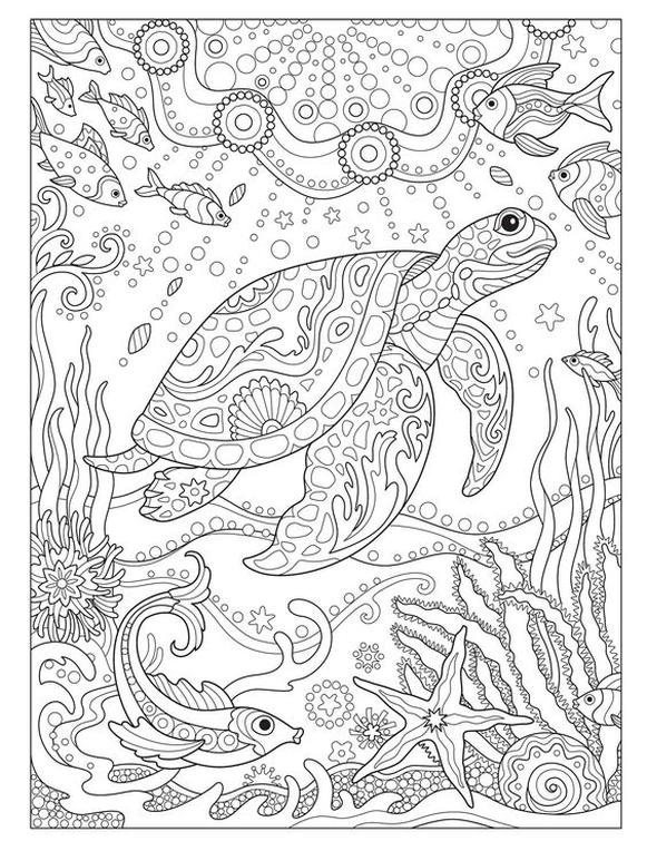 Get This Adult Coloring Pages Animals Turtle 2