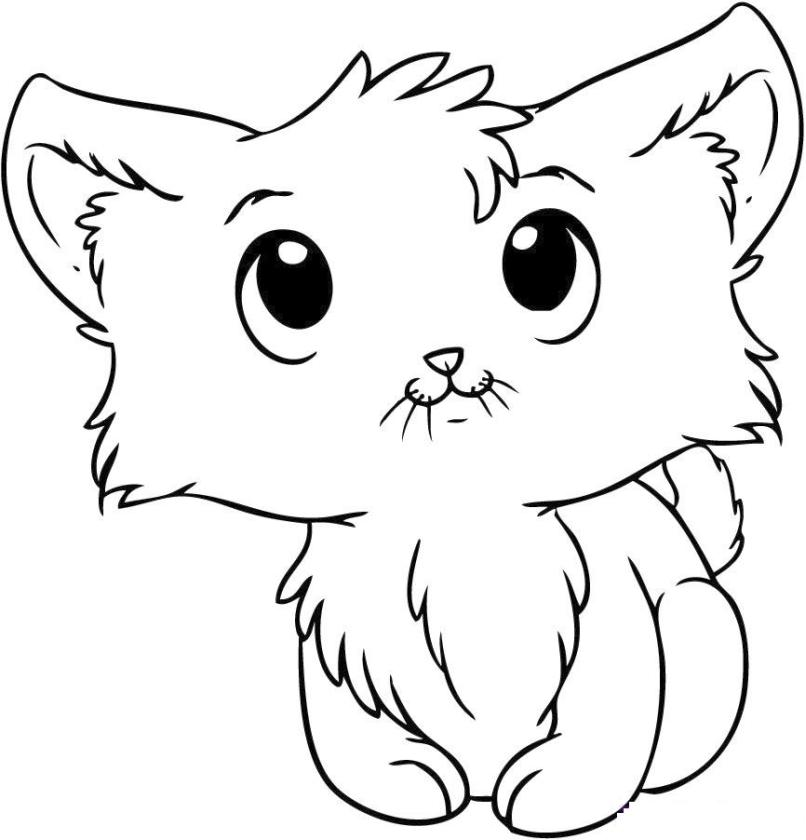Get This cat coloring pages for kids 7fg50