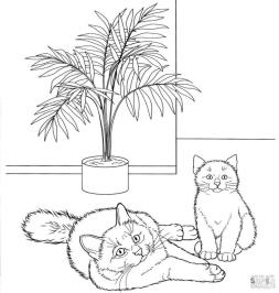cat coloring pages hgi50