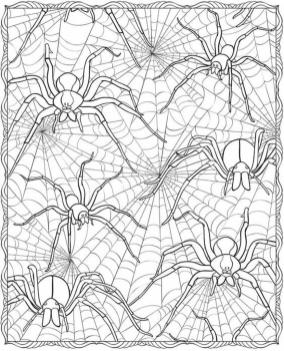 Adult Halloween Coloring Pages Spider Web 6spw