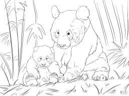 Mama Panda and Her Cub Coloring Pages